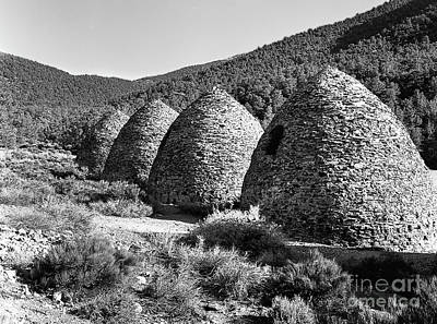 Photograph - Charcoal Kilns by Blake Yeager
