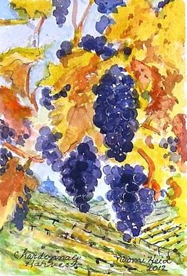 Napa Valley Vineyard Painting - Chardonay Harvest by Naomi E Heid