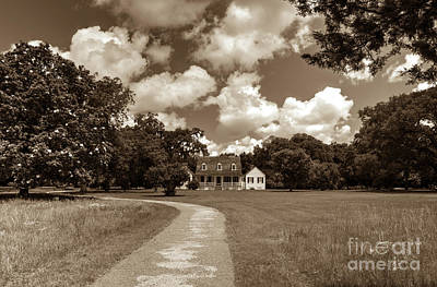 Photograph - Charles Pinckney's Snee Farm Country Retreat by Dale Powell