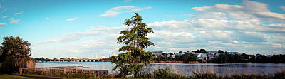 Photograph - Charles River Boston by Lilia D
