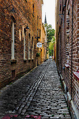 Photograph - Charleston Alley by Christopher Holmes