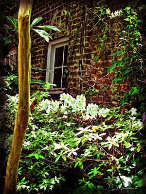 Soap Suds - Charleston Alley Window by Joan  Minchak