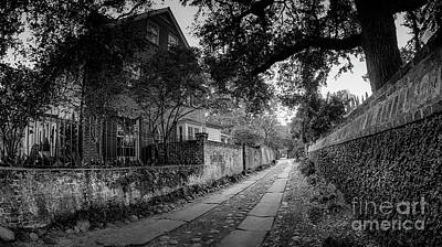 Photograph - Charleston Ally Path by David Smith