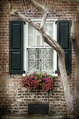 Photograph - Charleston Black Shutters, Window Flower Box by Melissa Bittinger