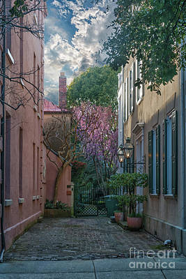 Photograph - Charleston Colors Of Spring by Dale Powell