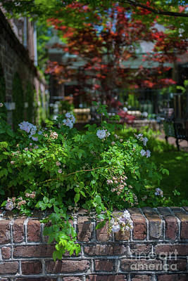 Photograph - Charleston Courtyard In The Spring by Dale Powell