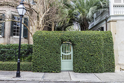 Photograph - Charleston Door And Ivy  by John McGraw