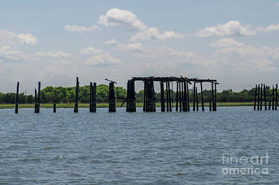 Photograph - Charleston Export Coal Terminal Wooden Testle by Dale Powell