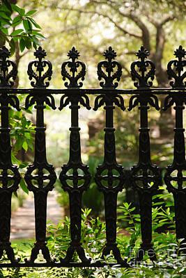 College Of Charleston Photograph - Charleston Fence by Susan Cliett