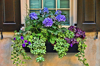 Photograph - Charleston Flower Box 10 by Allen Beatty