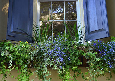 Photograph - Charleston Flower Box 3 by Allen Beatty