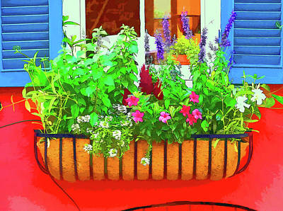 Photograph - Charleston Flower Box 6 by Allen Beatty