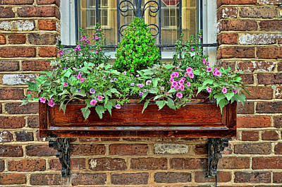 Photograph - Charleston Flower Box 8 by Allen Beatty