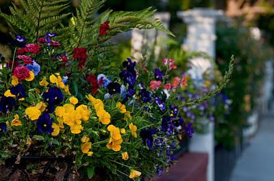 Charleston Flower Boxes Art Print by Melissa Wyatt