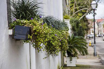 Photograph - Charleston Flower Pots  by John McGraw