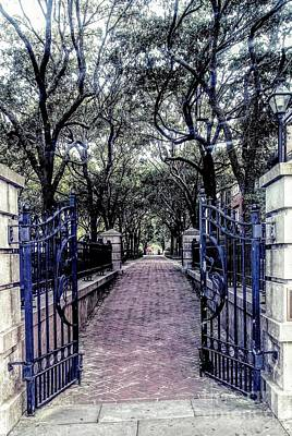 Photograph - Charleston Gated Pathway by Patricia L Davidson