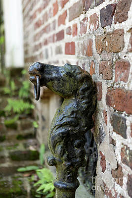 Photograph - Charleston Hitching Post by Heather Green