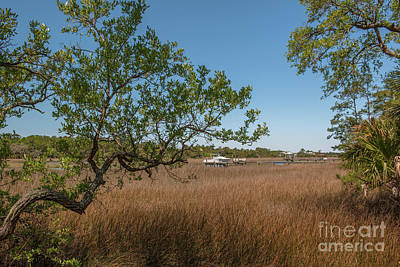 Photograph - Charleston Lowcountry Salt Marsh by Dale Powell