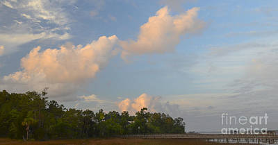 Just Desserts - Charleston Lowcountry Sky  by Dale Powell