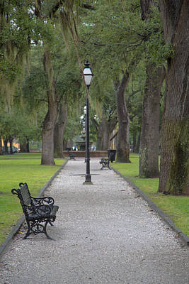 Landscape Photograph - Charleston Old Town Park by J Darrell Hutto