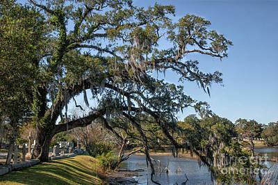 Photograph - Charleston Treasure by Dale Powell