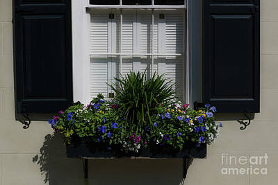 Photograph - Charleston Window Magic  by Dale Powell