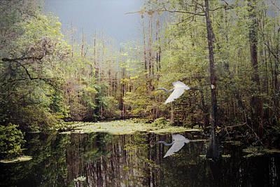 Digital Art - Charlie Bowlegs Creek by Richard Nickson