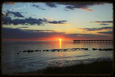 Photograph - Charlotte Harbor by Pascal Schreier
