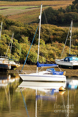 Photograph - Charlotte Rose Mylor by Terri Waters