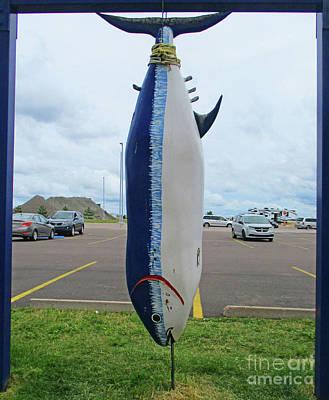 Photograph - Charlottetown Fish 2 by Randall Weidner