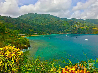Photograph - Charlotteville View  by Carey Chen
