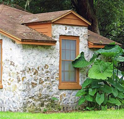 Photograph - Charming Chert Window by D Hackett