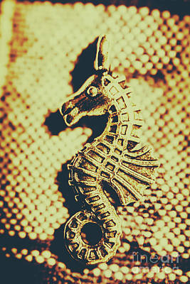 Seahorse Photograph - Charming Vintage Seahorse by Jorgo Photography - Wall Art Gallery
