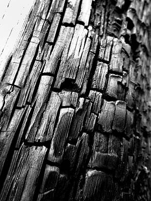 Photograph - Charred by Karen Stahlros