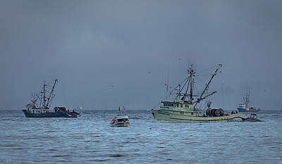 Photograph - Chasing Chum by Randy Hall