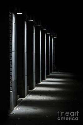 Photograph - Chasing Light by Evelina Kremsdorf