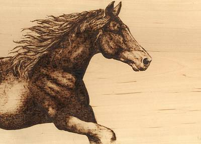 Pyrography Drawing - Chasing The Horizon by Laura Lobner