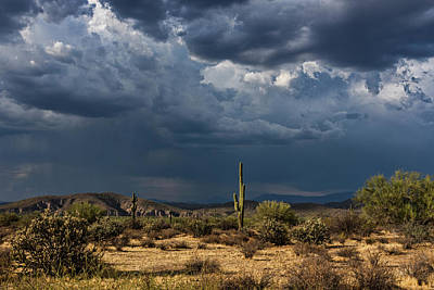 Photograph - Chasing The Rain  by Saija Lehtonen