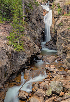 Photograph - Chasm Falls Vertical by Loree Johnson