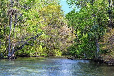 Photograph - Chassahowitzka River by John M Bailey