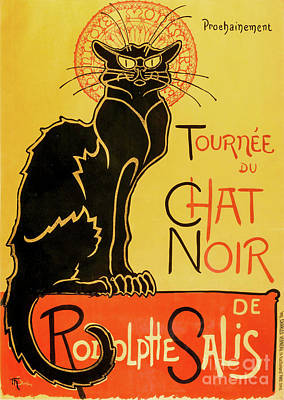 Photograph - Chat Noir by Delphimages Photo Creations