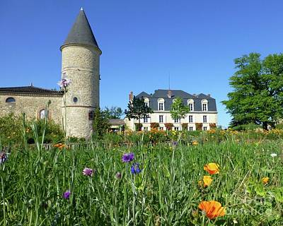 Photograph - Chateau Guiraud In Spring by Barbie Corbett-Newmin