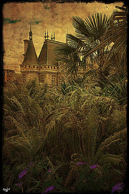 Photograph - Chateau In The Jungle by Chris Lord