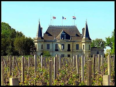 Photograph - Chateau Palmer by Betty Buller Whitehead