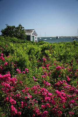 Photograph - Chatham Boathouse by Jim Gillen