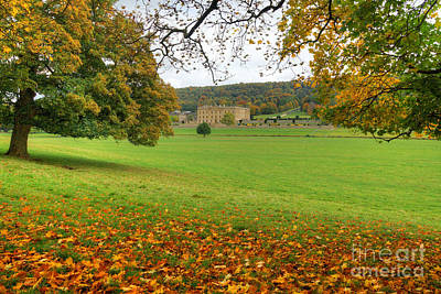 Photograph - Chatsworth Autumn View by David Birchall