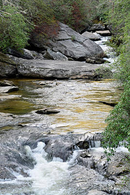 Chattooga River In Sc Art Print by Bruce Gourley