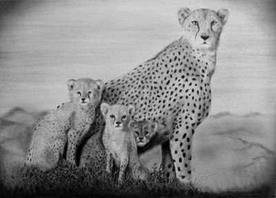 Cheetah Drawing - Che1 by Leon De Kock
