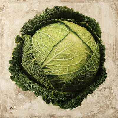 Cabbage Painting - Checcavolo by Danka Weitzen