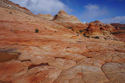 Photograph - Checkered Red Rock by Tranquil Light Photography